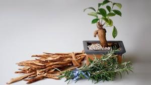 slider--herbal